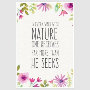 Walk With Nature Inspirational Poster (12 x 18 inch)