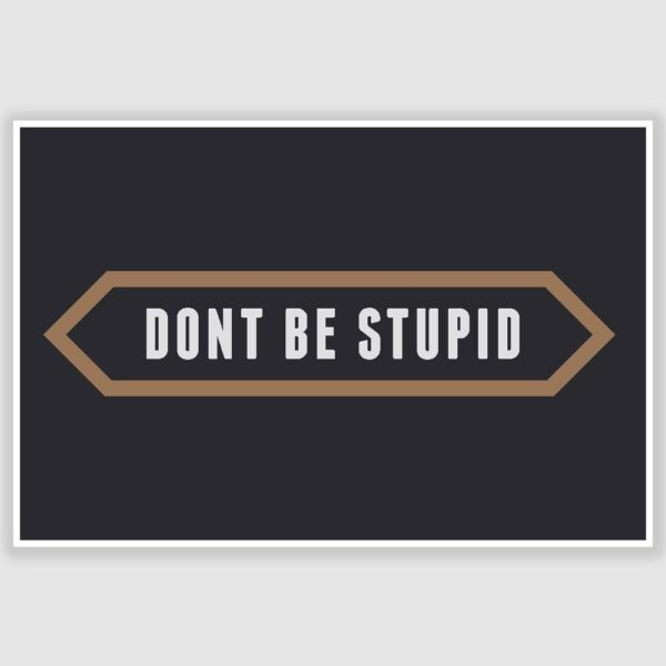 Dont be stupid Inspirational Poster (12 x 18 inch)