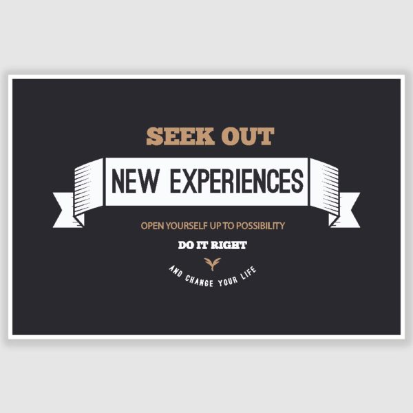 New Experiences Inspirational Poster (12 x 18 inch)