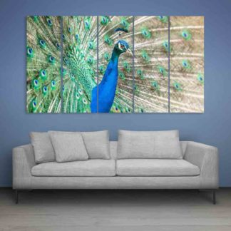 Multiple Frames Beautiful Peacock Wall Painting (150cm X 76cm)