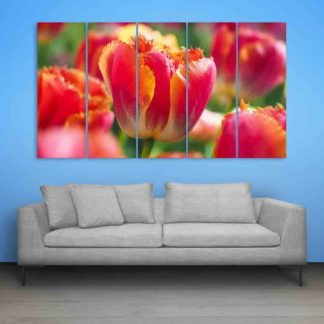Multiple Frames Tulip Flower Wall Painting (150cm X 76cm)