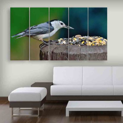 Multiple Frames Beautiful Bird Wall Painting (150cm X 76cm)