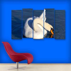 Multiple Frames White Swan Wall Painting for Living Room, Bedroom, Office, Hotels, Drawing Room (150cm X 76cm)