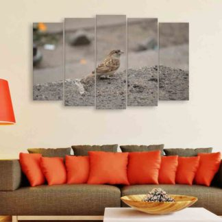 Multiple Frames Sparrow Wall Painting (150cm X 76cm)