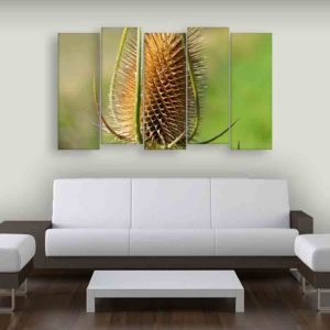 Multiple Frames Nature Plant Wall Painting for Living Room, Bedroom, Office, Hotels, Drawing Room (150cm X 76cm)