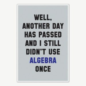 Didn't Use Algebra Once Poster | Funny Posters For Room
