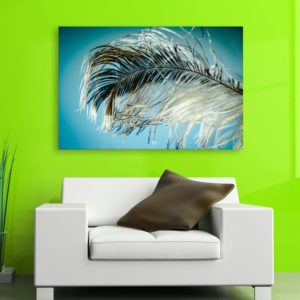 Canvas Painting – Beautiful Peacock Feather Art Wall Painting for Living Room, Bedroom, Office, Hotels, Drawing Room (91cm X 61cm)