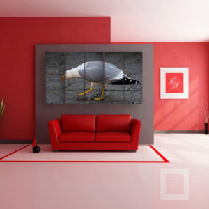 Multiple Frames Beautiful Bird Wall Painting for Living Room, Bedroom, Office, Hotels, Drawing Room (150cm x 76cm)