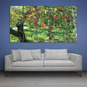 Multiple Frames Apple Tree Wall Painting for Living Room, Bedroom, Office, Hotels, Drawing Room (150cm x 76cm)