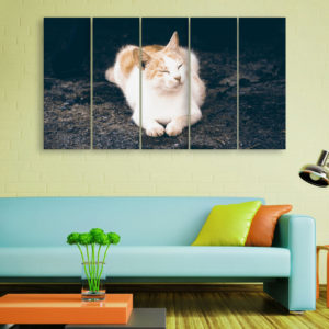 Multiple Frames Beautiful Cat Wall Painting for Living Room, Bedroom, Office, Hotels, Drawing Room (150cm x 76cm)