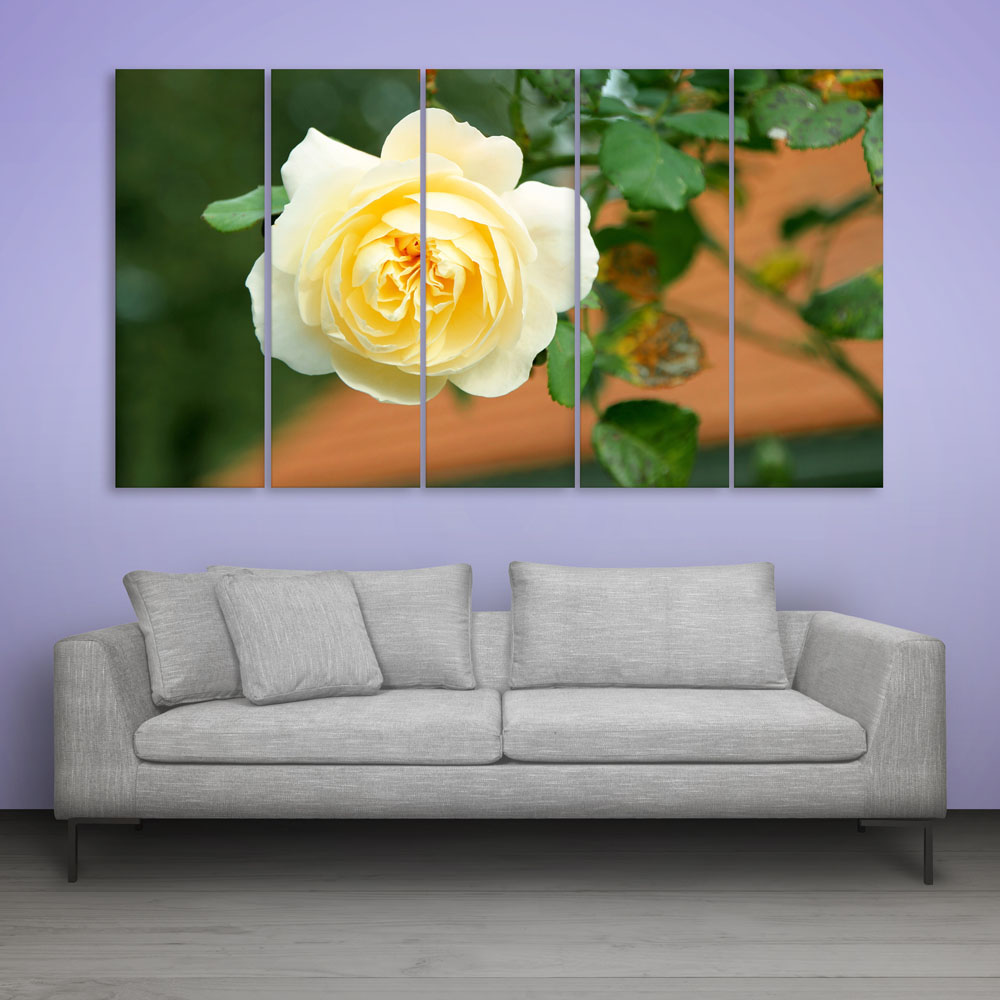 Multiple frames beautiful yellow rose wall painting for living room bedroom office hotels drawing room 150cm x 76cm