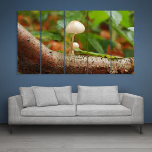 Multiple Frames Beautiful Autumn Wall Painting for Living Room, Bedroom, Office, Hotels, Drawing Room (150cm x 76cm)