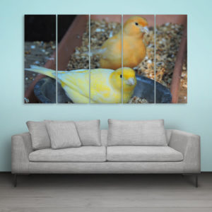 Multiple Frames Beautiful Birds Wall Painting for Living Room, Bedroom, Office, Hotels, Drawing Room (150cm x 76cm)