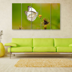 Multiple Frames Beautiful Butterfly Wall Painting for Living Room, Bedroom, Office, Hotels, Drawing Room (150cm x 76cm)
